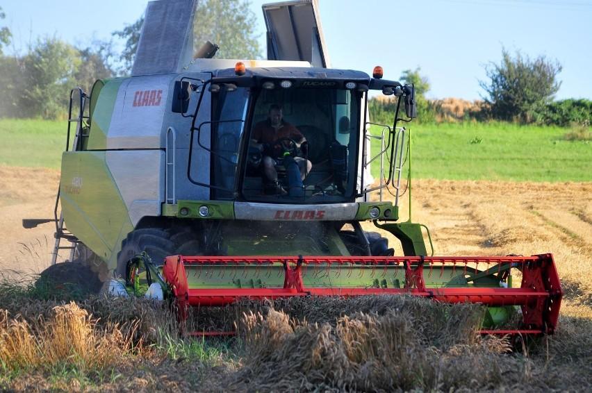 GUS przypomina - udział w spisie rolnym jest obowiązkowy, nie można się od niego uchylać.