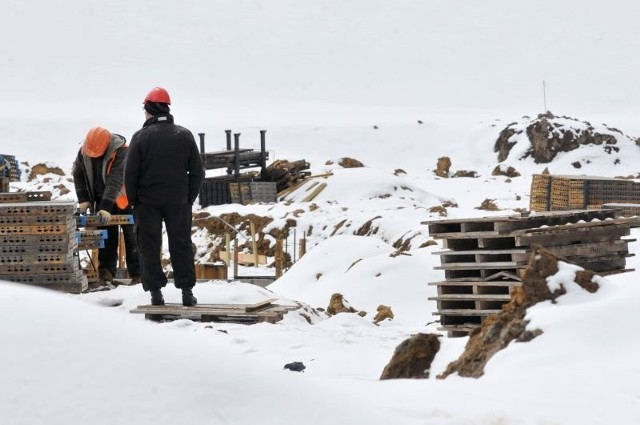 Na terenie strefy powstaje obiekt Darstalu. Na razie powstają fundamenty. Obiekt ma być gotowy w sierpniu.