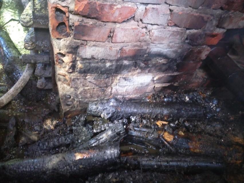 Przy ul. Klonowej w podmiasteckiej Pasiece palił się kurnik....