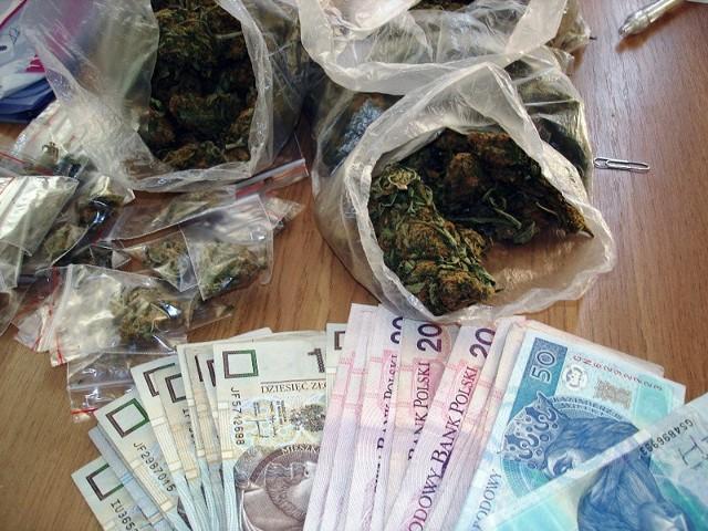 Zatrzymanej marihuany wystarczyłoby na 500 działek handlowych.
