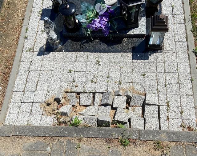 - Tak wygląda zniszczona kostka przy jednym z grobów na cmentarzu przy ul. Wiślanej w miejscu, gdzie usunięto ławeczkę - mówi pan Tomasz, nasz Czytelnik.