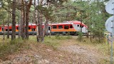 Tragiczny wypadek na torach na Półwyspie Helskim (19.10.2019). Pod kołami pociągu zginął 41-letni mężczyzna