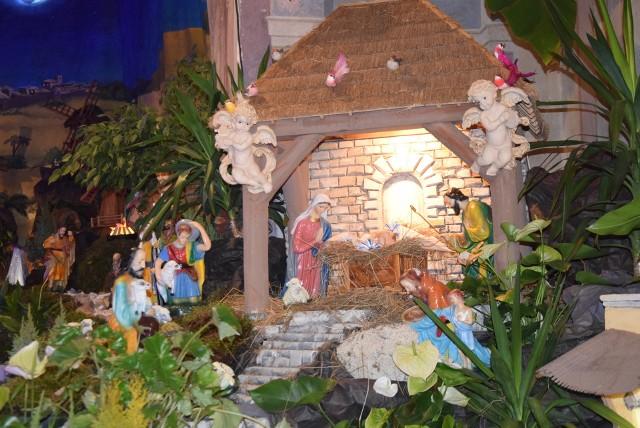 Największa w regionie szopka bożonarodzeniowa już jest