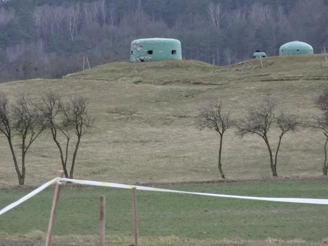 Teren w okolicach wsi Pniewo w gminie Międzyrzecz, w tym rejonie dokonano zabójstwa.