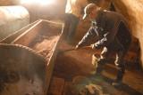 Dziś niesamowita wyprawa do krypty w Świdnicy