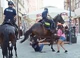 Koń policyjny w Katowicach niemal stratował mężczyznę w czasie pościgu na Staromiejskiej