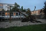 Burze w Poznaniu i Wielkopolsce: Piorun uderzył w oborę, zabijając bydło. Połamane drzewa, zerwane dachy i podtopienia [ZDJĘCIA]