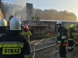 Pożar kurnika w Pasiece. W środku było 18 tysięcy sztuk drobiu (ZDJĘCIA)