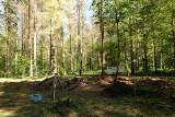 Wycinka Puszczy Białowieskiej nielegalna. Jest wyrok trybunału