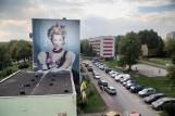 """Częstochowa już słynie z murali. A będzie ich więcej. Ściany bloków komunalnych dla uczniów """"Plastyka"""". Pokryją je muralami"""