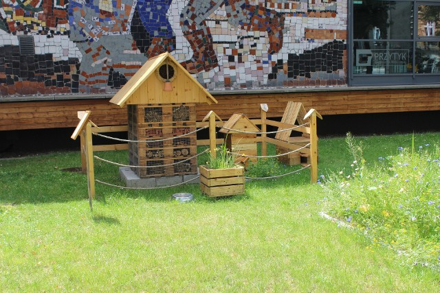 Przed wejściem do Tarnogórskiego Centrum Kultury powstała ekologiczna kraina. Zobacz kolejne zdjęcia. Przesuwaj zdjęcia w prawo - naciśnij strzałkę lub przycisk NASTĘPNE >>>