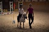 Zakrzów. Bieg Europejski i Igrzyska Pony w ośrodku jeździeckim [ZDJĘCIA]