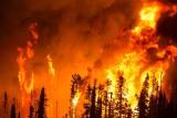 Pożar w Czarnobylu – czy istnieje zagrożenie dla Polski? Z mediów płyną sprzeczne informacje. Wyjaśniamy