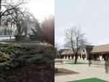 """W Radzyniu Podlaskim nie chcą wycinania drzew na rynku. """"Czy rewitalizacja musi oznaczać betonozę?"""""""