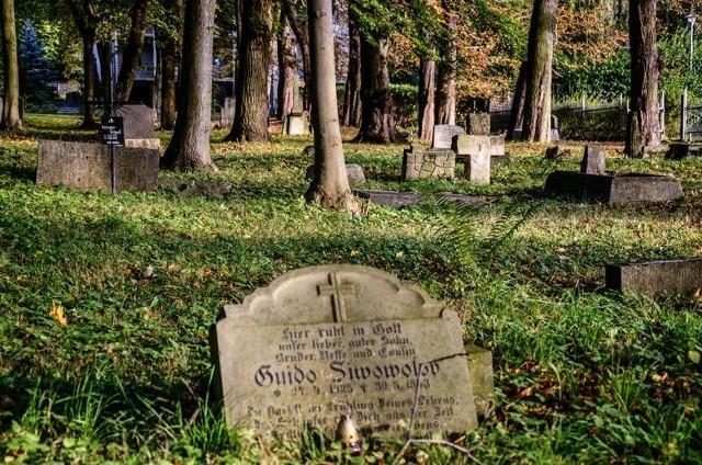 Pomorski konserwator rozpoczął procedurę wpisu do rejestru zabytków Cmentarza Brętowskiego, położonego przy ul. Słowackiego w Gdańsku