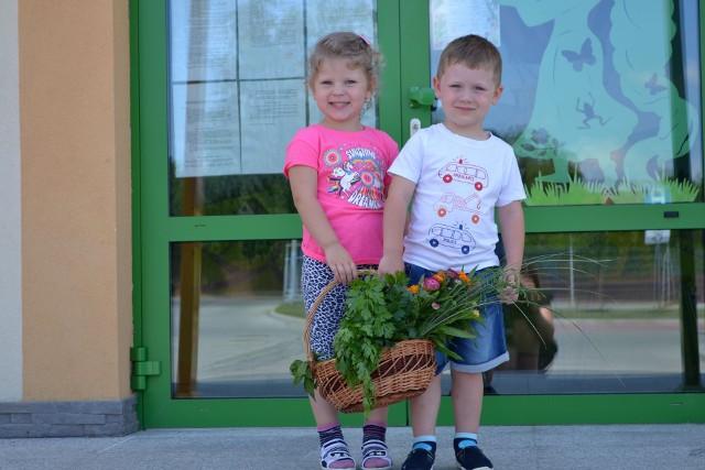 Przedszkolaki przyniosły w wiklinowym koszu do Urzędu Miasta wyhodowane przez siebie w przedszkolu warzywa i zioła