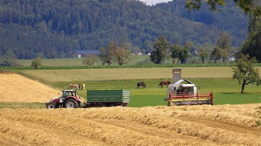 Modernizacja gospodarstw rolnych 2021. A jednak, termin przedłużony! Czy zmieniły się zasady?