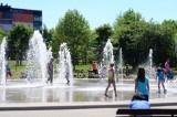 Trochę ciepła, trochę słońca i trochę wody dla ochłody. Ale nie w fontannie, bo to siedlisko bakterii!