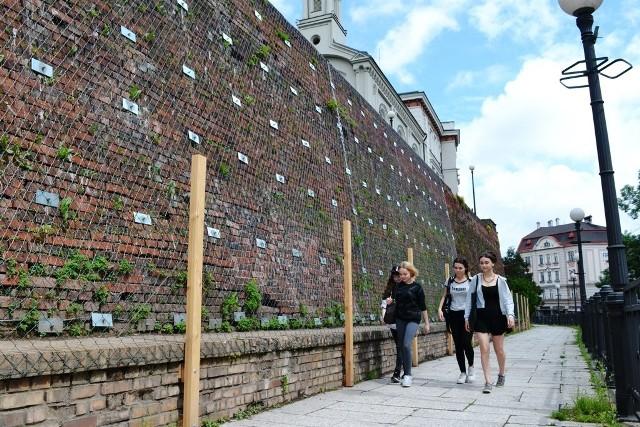 Chodnik wzdłuż muru Zamku Sułkowskich w Bielsku-Białej został udostępniony pieszym w piątek.