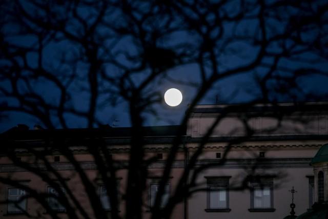 Wilczy Księżyc - niezwykła pełnia księżyca 28 stycznia 2021 roku.