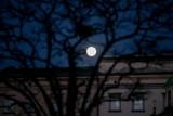 Pełnia Księżyca - styczeń 2021. Niezwykła pełnia tzw. Wilczy Księżyc - pierwsza pełnia w 2021 roku. Gdzie i jak oglądać?