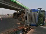 Wypadek na S61. Ciężarówka przewożąca drewno przewróciła się i zablokowała pas. Jedna osoba ranna [ZDJĘCIA]