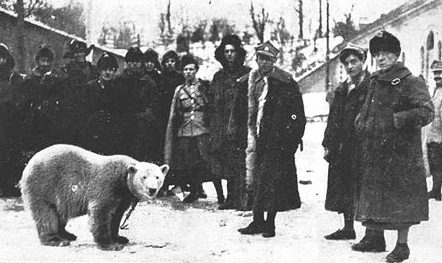 Na osobistego opiekuna Baśki adiutant batalionu wyznaczył kaprala Smorgońskiego, który do tej pory zajmował się musztrowaniem rekrutów. Otrzymał zadanie nauczenia musztry Baśki. A baon po przypłynięciu w początkach grudnia 1919 r. do Gdańska wraz Baśką skierowany został na wypoczynek do Modlina