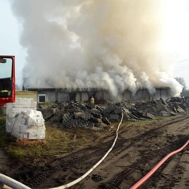 Pożar hali produkcyjno-magazynowej w Nowej Soli, 11 listopada 2019 r.