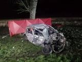 Wypadek między Przytoczną a Wierzbnem. Auto osobowe zderzyło się z ciężarówką. Zginęła jedna osoba