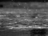 Deszczowo w woj. lubelskim. IMGW przedłuża ostrzeżenie dla naszego regionu