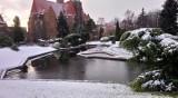 Za kilka dni otwierają Ogród Botaniczny Uniwersytetu Wrocławskiego (ZDJĘCIA)