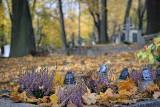 Wszystkich Świętych 2020 - jak wypada? Czy mamy wtedy wolne? Czy cmentarze będą zamknięte?