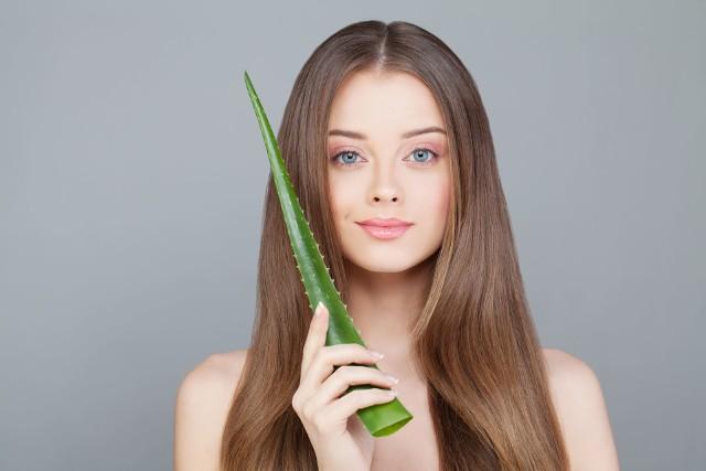 Do pielęgnacji suchych włosów warto włączyć naturalny żel aloesowy, o nawilżających właściwościach.