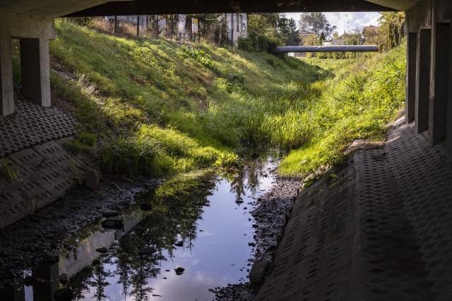 Niski poziom Uherki odsłonil przy okazji zalegające na dnie rzeki  śmieci