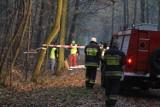 W Parku Kościuszki znaleziono zwłoki 62-letniej kobiety NAJNOWSZE FAKTY Kim jest morderca?