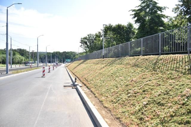 Innowacyjna zieleń na ul. Szafera w Szczecinie