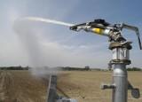 Woda z Wisły może zmienić Kujawy w kwitnący Ogród Polski. Kto wyłoży 2,5 mld zł?