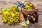 Czy zioła mogą być szkodliwe? 10 ziół o niebezpiecznym działaniu