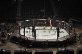 Koronawirus. UFC dało przykład. Gale sportów walki powracają, również w Polsce