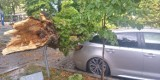 Burza w Łódzkiem. Zerwane dachy, połamane gałęzie, zalane ulice. Zobacz zdjęcia z województwa