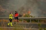 """Andaluzja. To """"głodny potwór"""", mówią o pożarach, które szaleją w tym regionie Hiszpanii już od tygodnia (WIDEO)"""