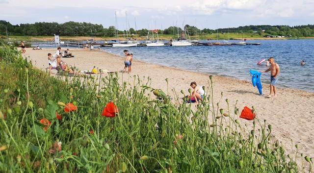 W nocy z 16 na 17 czerwca odkomarzane będą między innymi tereny nad Jeziorem Tarnobrzeskim.
