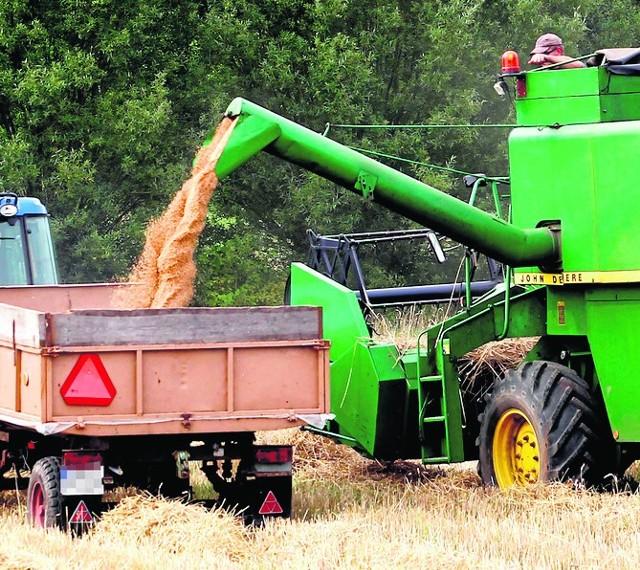 Jak wynika z raportu, polska wieś jest coraz mniej rolnicza. Nadal jednak na tle Europy u nas w rolnictwie pracuje najwięcej osób.