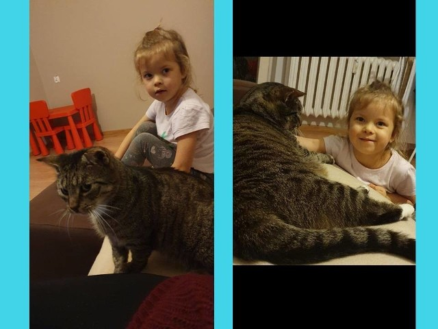 Kot Uszi, którym opiekowali się członkowie Stowarzyszenia S.O.S. dla Zwierząt z nową właścicielką. Stowarzyszenie aktywnie poszukuje domów dla kotów, którymi się opiekuje