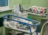 Gdańsk: W Uniwersyteckim Centrum Klinicznym w ciągu jednego dyżuru na świat przyszło 16 maluchów!