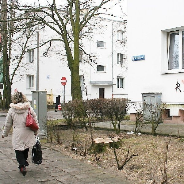 Bloki Włocławskiej Spółdzielni  Mieszkaniowej przy ul. Bukowej i Chmielnej  wybudowano w 1958 roku