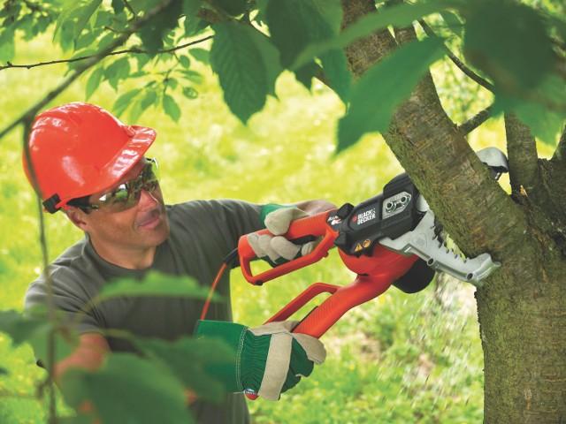 Sekator łańcuchowy Alliagator marki Black & DeckerRozpoczyna się okres wiosenno-letni, czyli czas pierwszych prac w ogrodach i sadach, które obejmują m.in. pielęgnację drzew i krzewów.