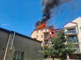Wielki pożar w Zgierzu! Przy ul. 3 Maja palił się dach 4-piętrowego budynku. ZDJĘCIA
