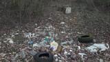 Czytelnik sygnalizuje: Trzeba uprzątnąć okolice Małej Księżej Góry pod Grudziądzem [zdjęcia]