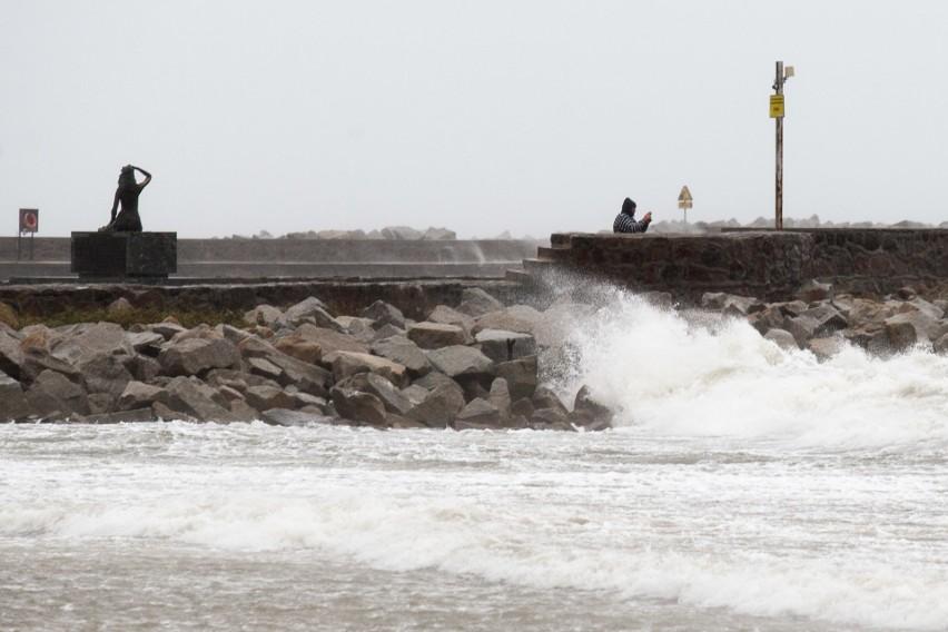 Silny wiatr na Pomorzu. Połamane drzewa i zerwane linie energetyczne
